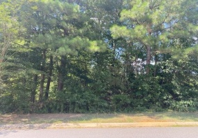 68 Lazy Water Drive SW, Euharlee, Georgia 30120, ,Land,For Sale,68 Lazy Water Drive SW,6752688